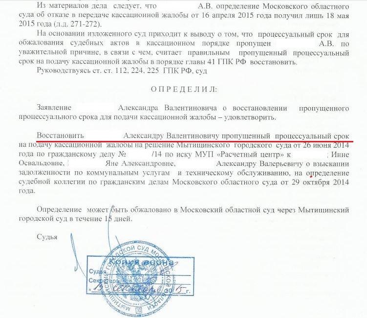 жалоба председателю районного суда рф по гражданскому делу образец - фото 9